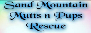 Sand Mountain Rescue