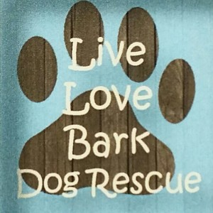 live love bark dog rescue